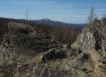 Dwernik Kamień. Dydaktyczną ścieżką na sam szczyt