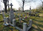 Kalisz. Niezwykły cmentarz na Majkowie