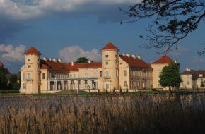 Rheinsberg Tu zamku strzeże rudy kot