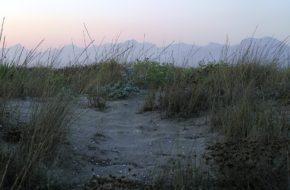 Toskania Literackie wątki nad morzem