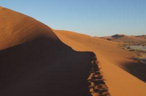 Namib Na tej pustyni nie sposób się nudzić