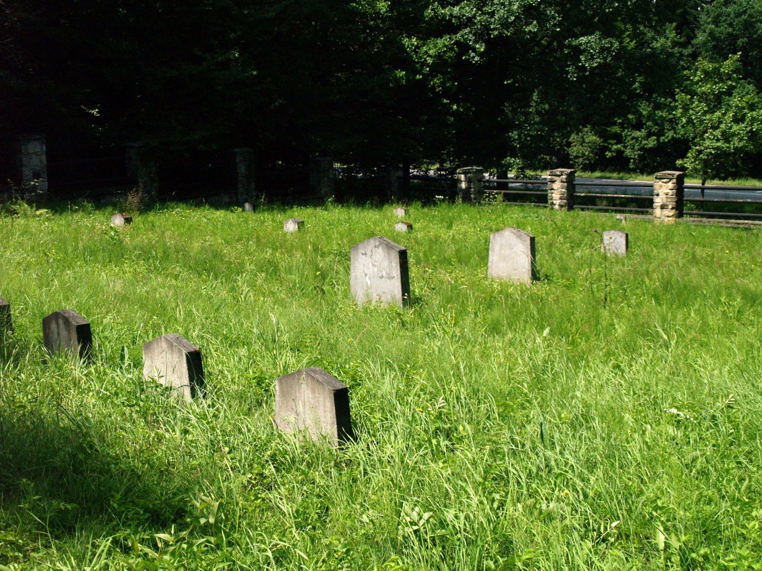 Mszanka. Cmentarz nr 124 Hansa Mayra