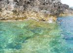 Korfu. Morze Jońskie i zatoka Paleokastritsa