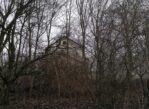 Warszawa. Znalazłem tu bobry i nietoperze