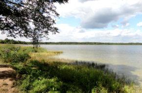 Szacki Park Narodowy Bujna przyroda nad wołyńską Świtezią