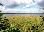 Szacki Park Narodowy. Bujna przyroda nad wołyńską Świtezią