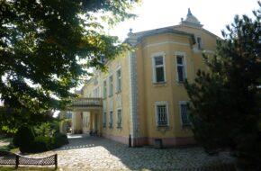Koźmin Wielkopolski Wczoraj i dziś pałacu Lipowiec