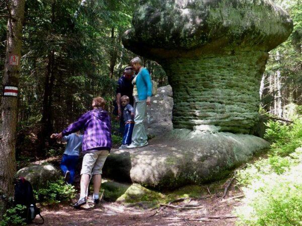 Góry Stołowe Szczeliniec i inne formacje skalne