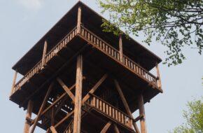Wapienne Do wieży widokowej na górze Ferdel