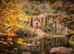Lipnica nad Sázavou. Sto lat dobrego wojaka Szwejka