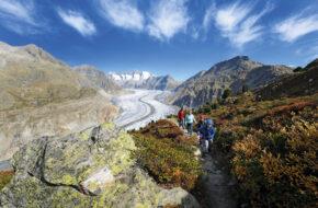 Bettmeralp Potężny Aletsch wije się w dolinie